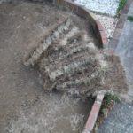 タイル状にはがされた芝生